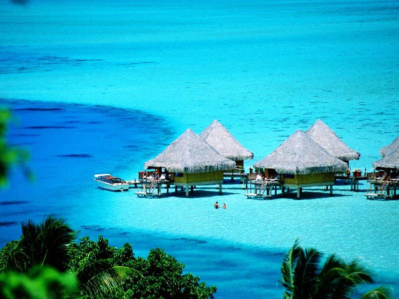 Туроператор Оптима - туры в Тунис. Отели Туниса. Хаммамет цены. Пляжный отдых в Тунисе. Тунис цены. Тунис туры